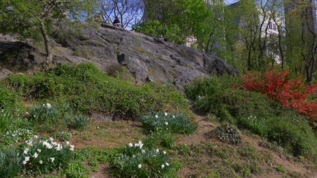 Usa sunny day new york central park famous rock mountain 4k video