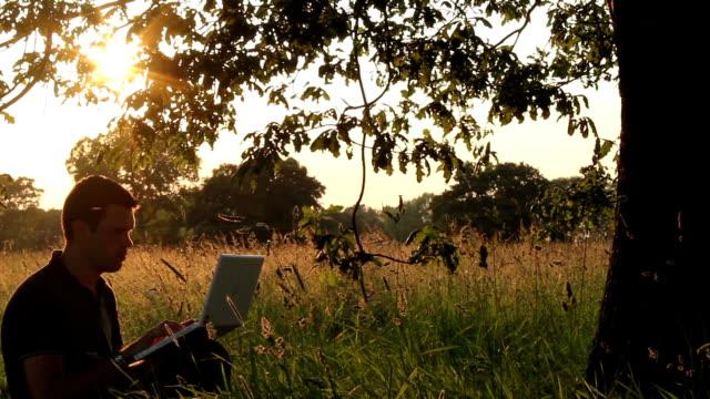 Using A Laptop Under An Old Oak Tree video