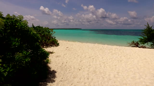 v00285 Maldives beautiful beach background white sandy tropical paradise island with blue sky sea water ocean 4k video