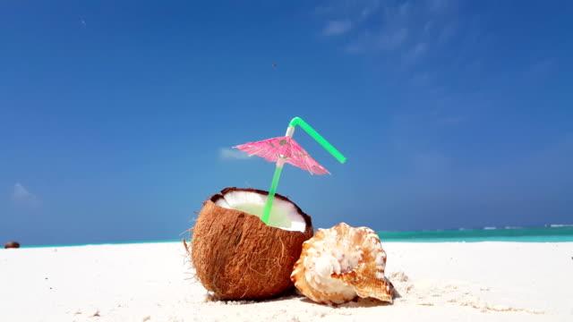 v02945 Maldives beautiful beach background white sandy tropical paradise island with blue sky sea water ocean 4k coconut seashell video