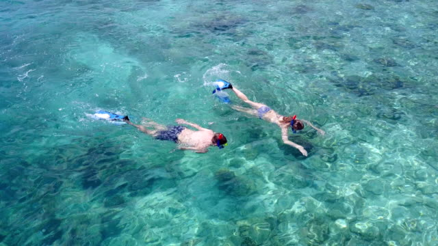 v04071 Aerial flying drone view of Maldives white sandy beach 2 people young couple man woman snorkeling swimming diving on sunny tropical paradise island with aqua blue sky sea water ocean 4k video