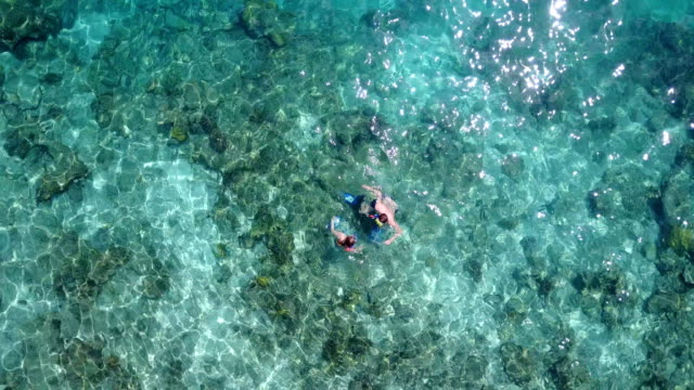 v04073 Aerial flying drone view of Maldives white sandy beach 2 people young couple man woman snorkeling swimming diving on sunny tropical paradise island with aqua blue sky sea water ocean 4k video
