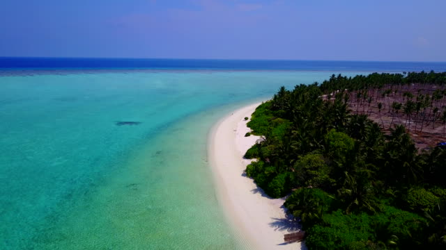 v04972 Aerial flying drone view of Maldives white sandy beach on sunny tropical paradise island with aqua blue sky sea water ocean 4k video