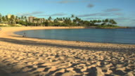 HD: Vacation beach video