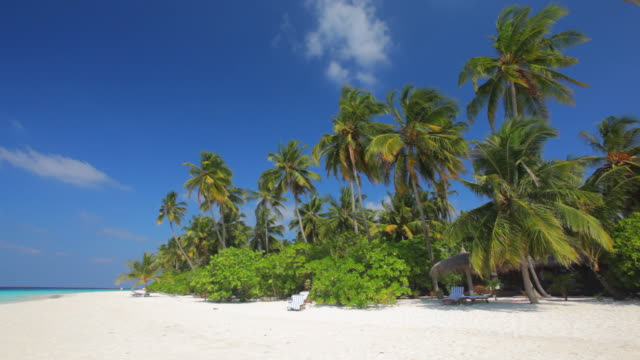 vacation beach video
