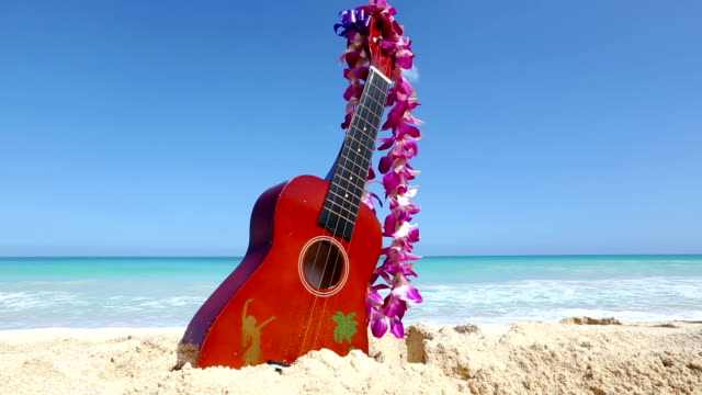Vacation travel concept with ukulele and lei on tropical beach Oahu Hawaii video