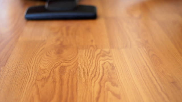 Vacuuming Laminate Flooring-No Sound video