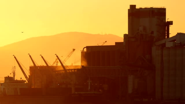 Vapor Rises From Refinery At Sunset video