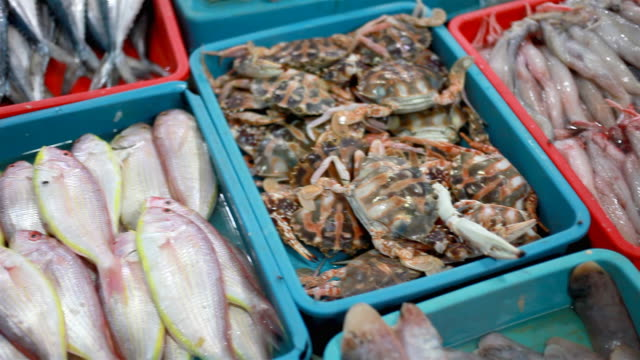 Variety of Fishes and Crab for Sale in Indian Market video
