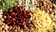 Various dry legumes video