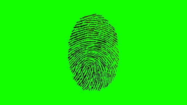 Various Fingerprints Running on a Green Screen Background video