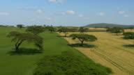 AERIAL: Vast wheat fields in Africa video