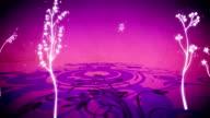 vector flowers 6 loop video
