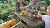Vegan Family Eating Organic Food in Garden video