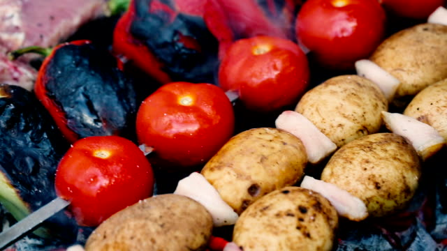Vegetable skewers on barbecue grill video