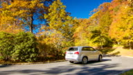 Vehicle Passing Fall Colored Trees in North Carolina Mountains video
