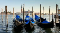 HD1080 : Venice St. Mark's Square'the Piazza' - Montage  VIDEO video