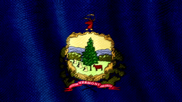 Vermont flag waving animation video