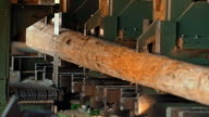Vertical saw cutting a log in a lumber mill video