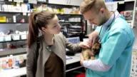 Vet checking puppy's ear video