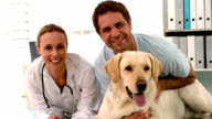 Vet with dog and owner smiling at camera video