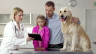 Veterinarian Using A Digital Tablet video