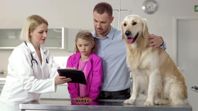 Veterinarian Using A Digital Tablet video