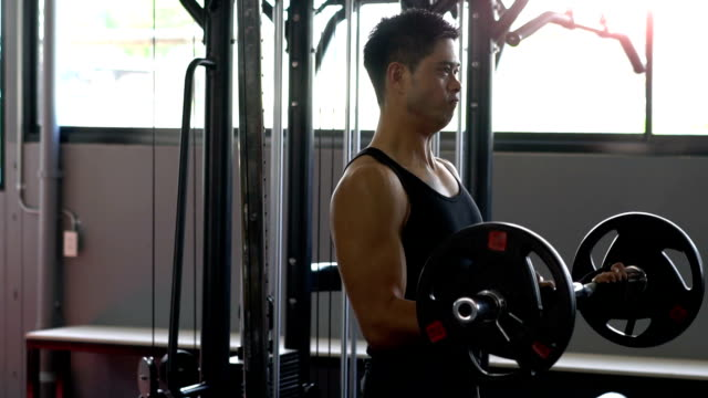 HD Video : fitness man in the gym video