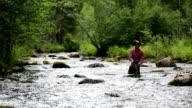 HD video. Fly fisherman video
