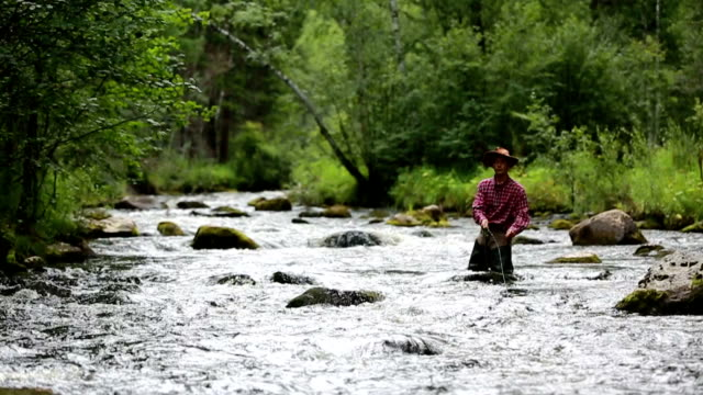 HD video. Fly fisherman video