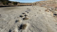 HD video hiker and dinosaur tracksite Colorado video