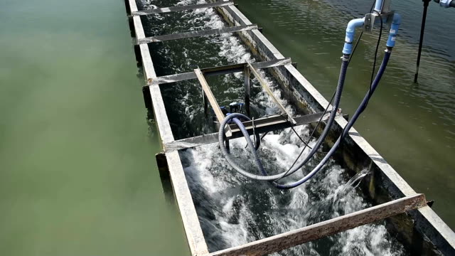 video of Clarifier Tank process in Water Treatment Plant video