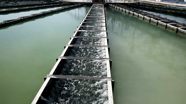video of Clarifier Tank process in Water Treatment Plantrocess video