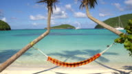 video of hammock between palms at Maho Bay, St.John, USVI video
