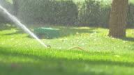 Video of sprinkler in 4k video