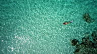video of unrecognizable woman snorkeling in Caribbean waters video