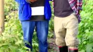 Video Portrait New Technology African Organic Farmers video