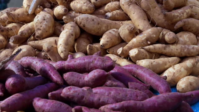 Video purple and yellow yams pile in market video