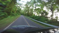 4K Video: View of Khao Yai national park from roof of car, Thailand video