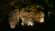 HD video Visitors enjoy Carlsbad Caverns New Mexico video