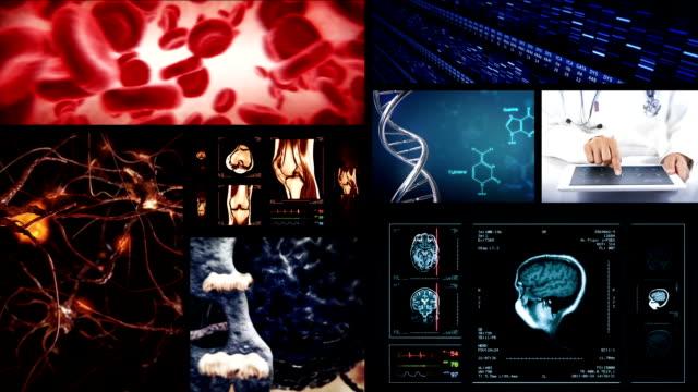 Video wall. Medical themed videos. Alpha matte. video