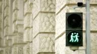 Vienna traffic light for more tolerance video