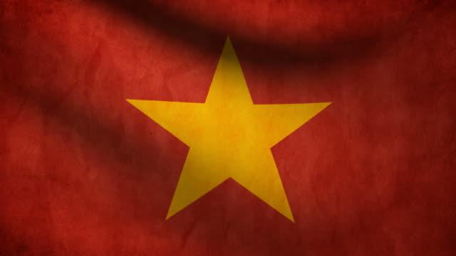 Vietnam flag. video