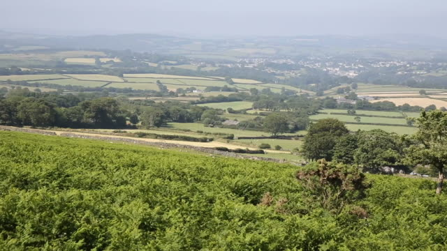 View from Higher Godsworthy Dartmoor Devon of the National Park video