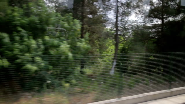 View from train video
