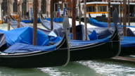 4K View of blue gondolas on Grand canal, Venice, Italy video