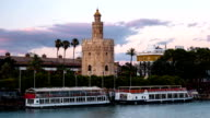 View of Golden Tower, Torre del Oro, of Seville, Andalusia, Spain video