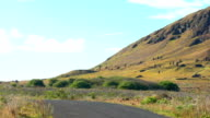 View of Moai in the quarry at the Volcano Rano Raraku video