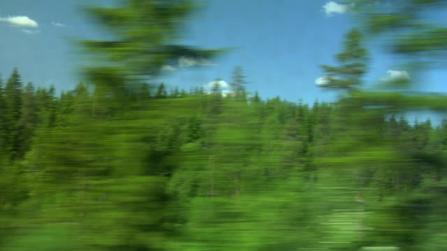 View of passing landscape from a train window. video