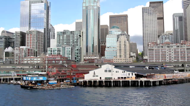 View of Seattle from the Ferry video